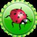 Ladybug cap, herufi kubwa