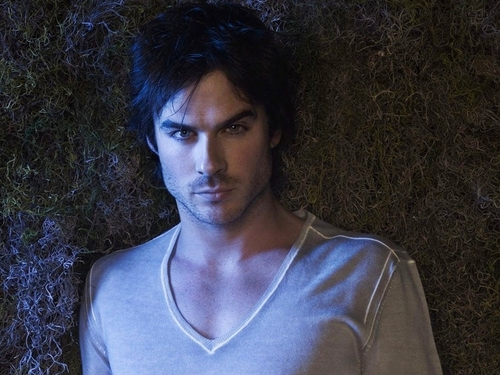 Damon Salvatore پیپر وال probably containing a portrait called Damon Salvatore ✯