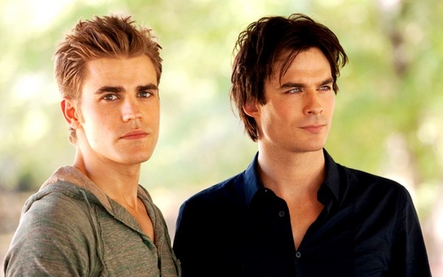 Damon and Stefan Salvatore 壁紙 with a portrait called Damon&Stefan ✯