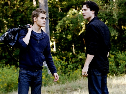 Damon and Stefan Salvatore 壁紙 containing a business suit called Damon&Stefan ✯