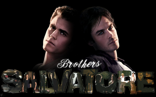 Damon and Stefan Salvatore wallpaper probably containing a sign entitled Damon&Stefan ✯
