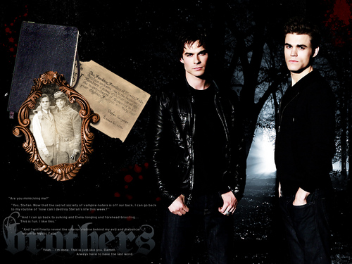 Damon and Stefan Salvatore wallpaper possibly with a business suit, a well dressed person, and a sign titled Damon&Stefan ✯