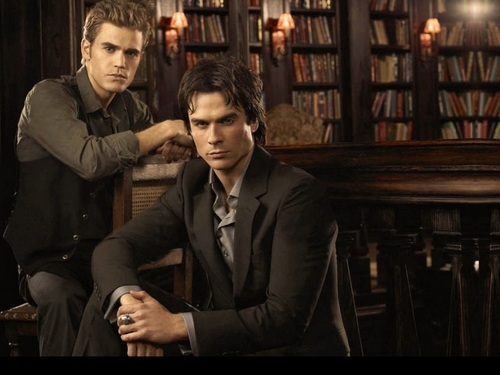 Damon and Stefan Salvatore 壁紙 with a bookshop called Damon&Stefan ✯