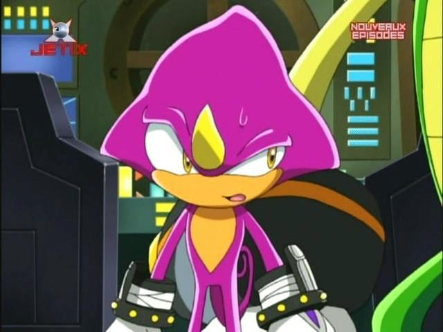 Luna and Espio images Espio Again!: Sonic X wallpaper and ...