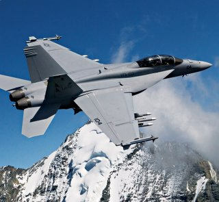 F/A-18E Super होरनेट, हॉनेट, पड़ी मक्खी