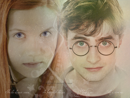 Harry&Ginny - harry-and-ginny Photo