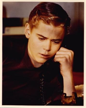 essays on ponyboy from the outsiders Outsiders essay topics who would you consider to be the biggest hero in the novel the outsiders throughout the novel ponyboy learns many things.
