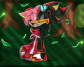 Shadamy In Sonic Riderz