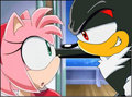 Shadamy In Sonic X