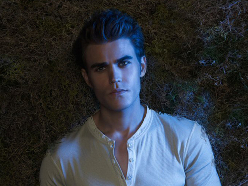 Stefan Salvatore kertas dinding probably with a portrait entitled Stefan kertas dinding ✯
