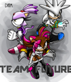 Team Future - diamond-the-hedgehog photo