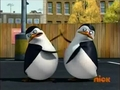 You go Private! Fight! Fight! Fight! - penguins-of-madagascar screencap