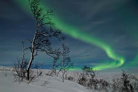 aurora borealis - norway Photo