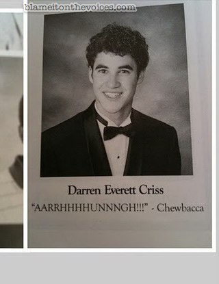 senior picture+funny quote