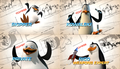 """Top Secret Look at the Penguins of Madagascar"" Collage - penguins-of-madagascar photo"