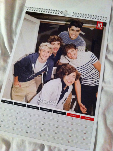 One Direction wallpaper called 1D Official 2012 Calendar pics! ♥