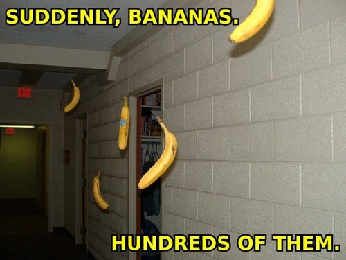 Bananas everywhere
