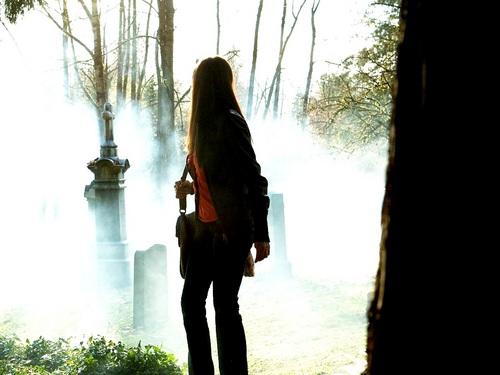 Elena&Katherine দেওয়ালপত্র