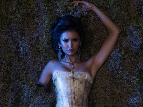 Katherine Pierce and Elena Gilbert wallpaper with a bustier titled Elena&Katherine wallpaper