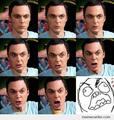 FFFFFFFFFFFUUUUUUUUUU- - sheldon-cooper photo