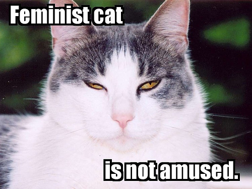 Feminism fondo de pantalla with a tom and a tabby entitled Feminist Cat