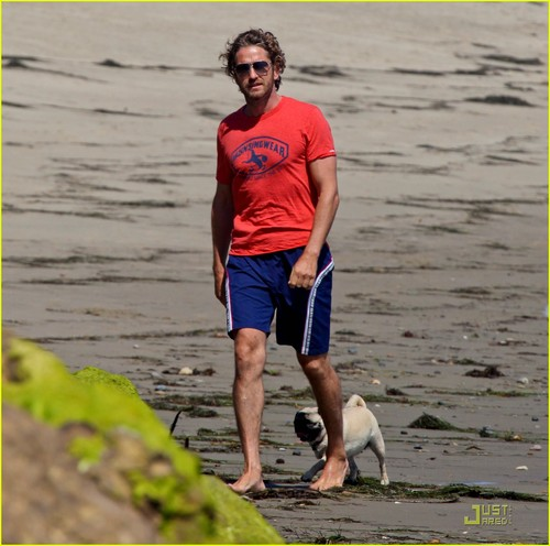 Gerard Butler wallpaper titled Gerard Butler Strolls the Beach with Lolita