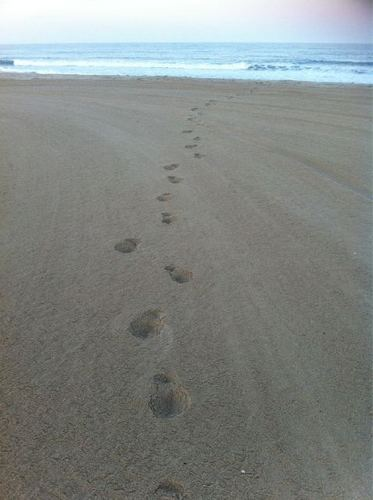Keith's footprints in the sand