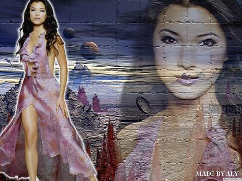 Kelly Hu fondo de pantalla possibly containing an abattoir called Kelly Hu