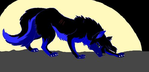 My wolf: Amber ^^