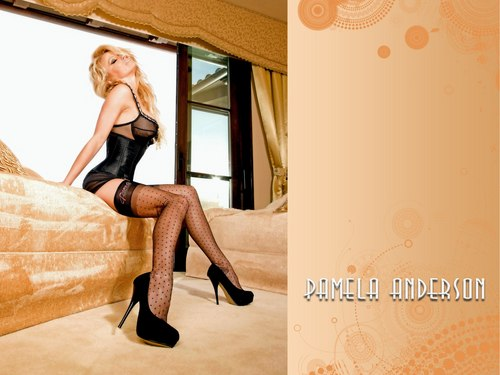Pamela Anderson wallpaper with hosiery, bare legs, and tights called Pamela Anderson