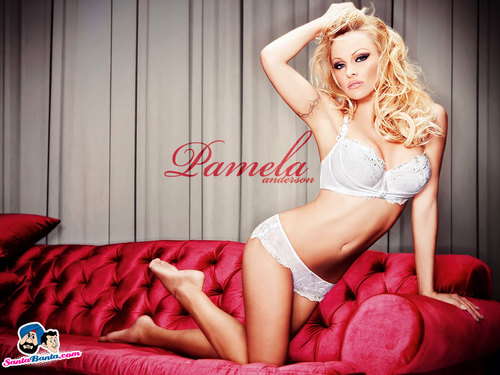 Pamela Anderson wallpaper probably containing a brassiere, a bikini, and a lingerie titled Pamela Anderson