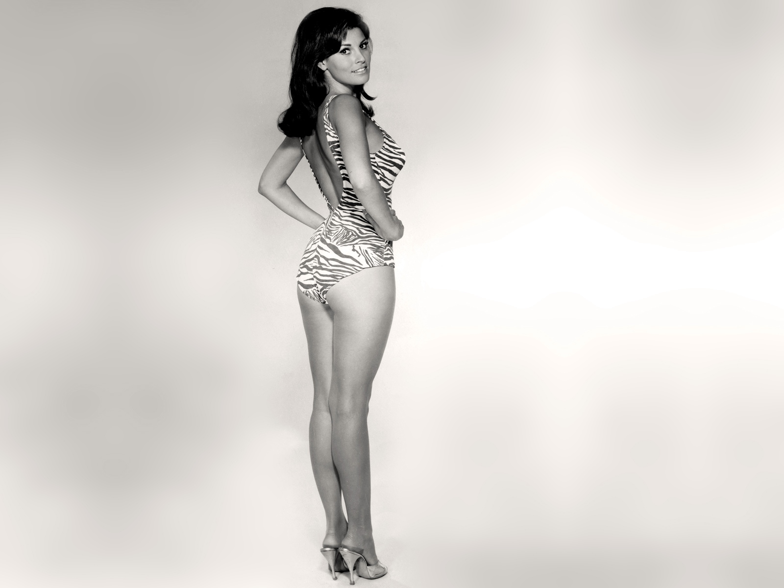 Raquel Welch - Photo Actress