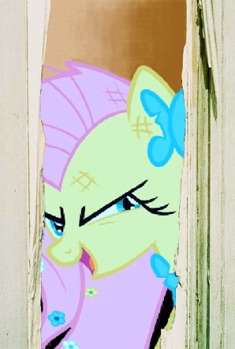 The Fluttershining