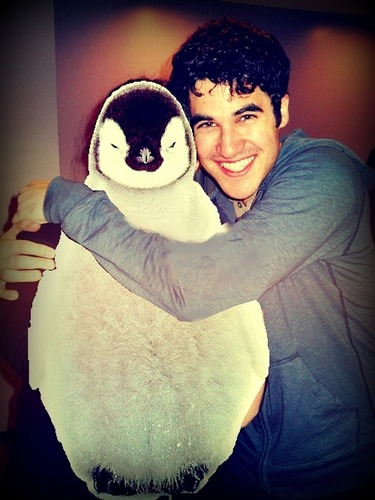 Darren Criss kertas dinding entitled possibly my kegemaran darren pic ever