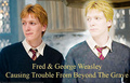 ♥ Fred and George ♥ - fred-and-george-weasley photo