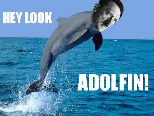 Adolphin