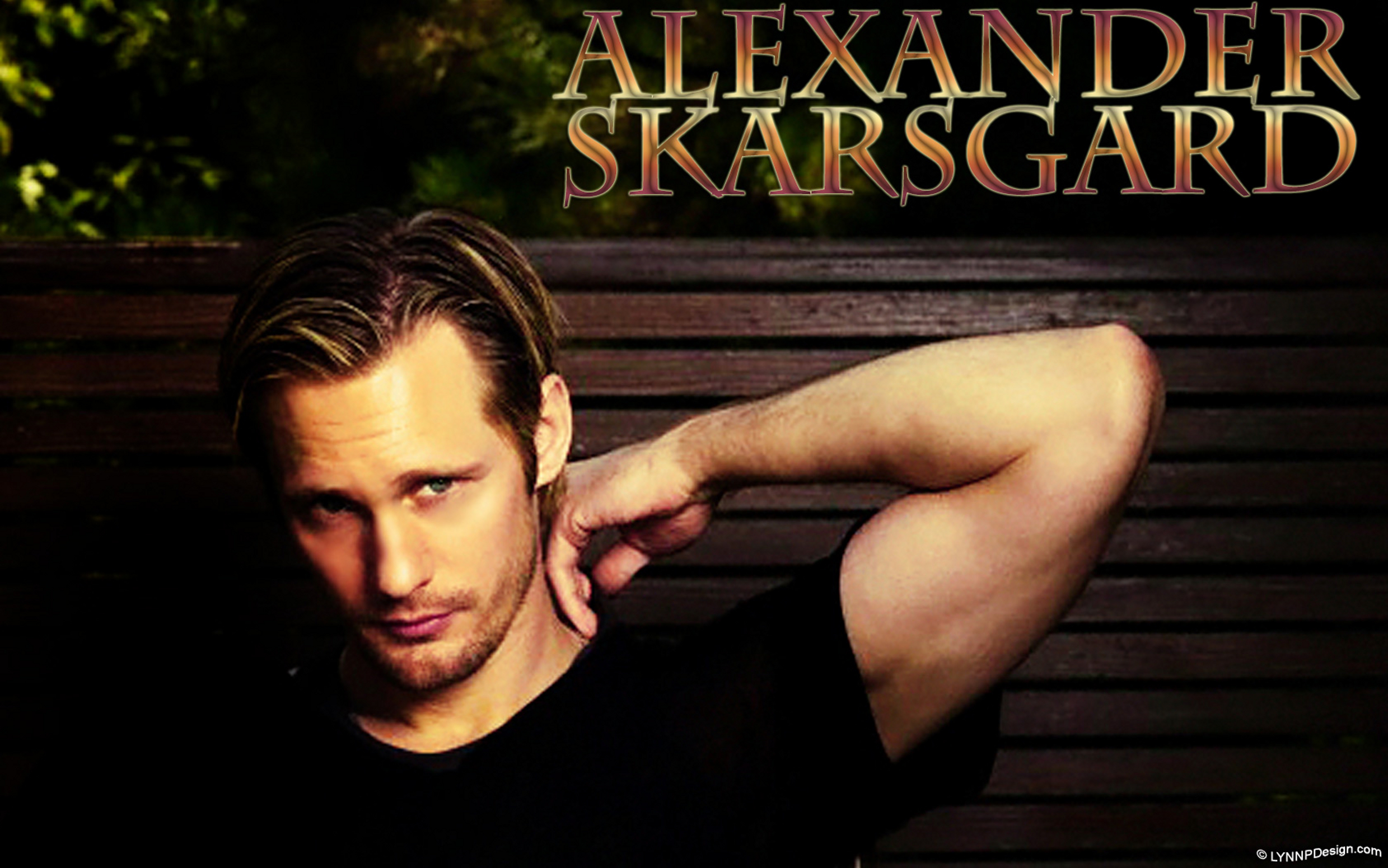 alexander skarsgard wallpaper 2017 2018 best cars reviews. Black Bedroom Furniture Sets. Home Design Ideas