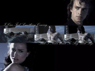 Anakin and Padme fonds d'écran