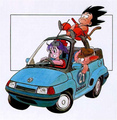 Car time - bulma-briefs photo