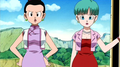 Chi-Chi and Bulma in Yo! Son Goku and His Friends Return!! - bulma-briefs screencap