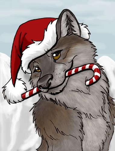 크리스마스 늑대