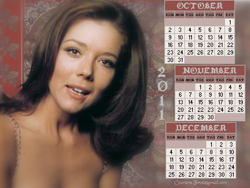 Diana - October thru December 2011(calendar)