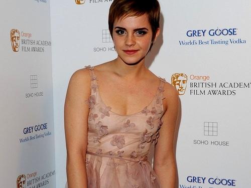 Emma Watson Hintergrund containing a portrait titled Emma Watson Hintergrund ❤
