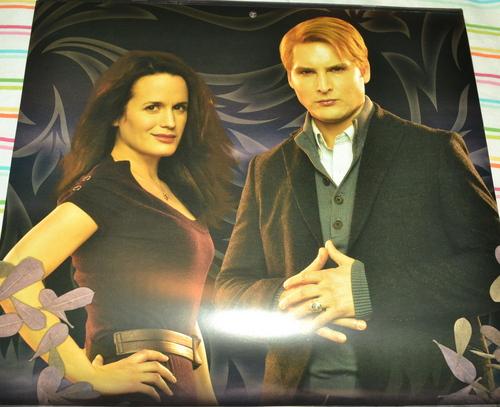 Esme and Carlisle on the 2012 Breaking Dawn calendar!