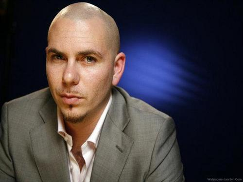 Musica wallpaper containing a business suit entitled Pitbull