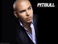 Pitbull kertas dinding