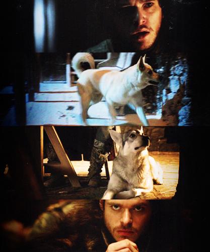 Jon Snow and Robb Stark wallpaper entitled Robb Stark and Jon Snow