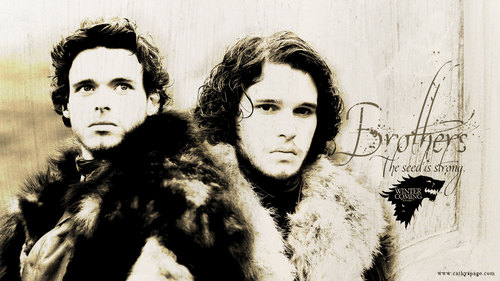 Jon Snow and Robb Stark wallpaper with a pelliccia coat, a mink, and a sable cappotto called Robb Stark and Jon Snow