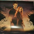 Rosalie and Emmett - Breaking Dawn Calendar