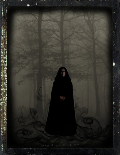 Snape in Forest